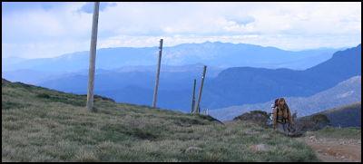 Teri, near the summit, Buffalo Plateau out the back