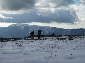 Mt Buller from the summit