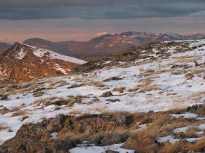 Mt Eadley Stoney and the Cross Cut Saw & feathertop right out the back ...