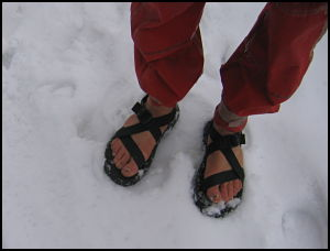 feet_opt