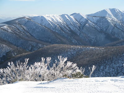 the Razorback and Feathertop, from near Mt Loch
