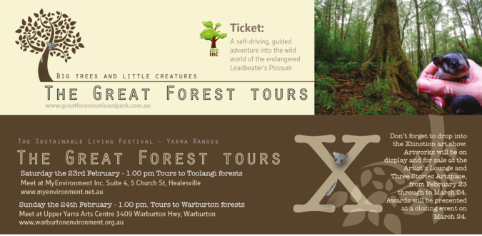 Forest-Tours_articlefullwidth