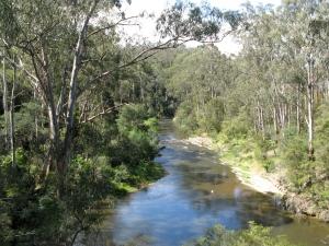Yarra_River_Pound_Bend